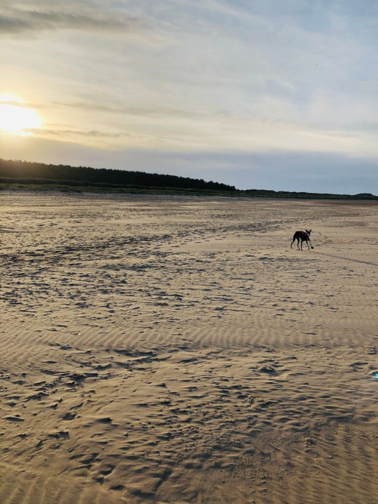 Holkham beach sunset