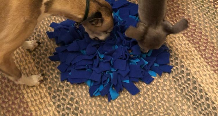Snuffle Mats- make your own for Under £10