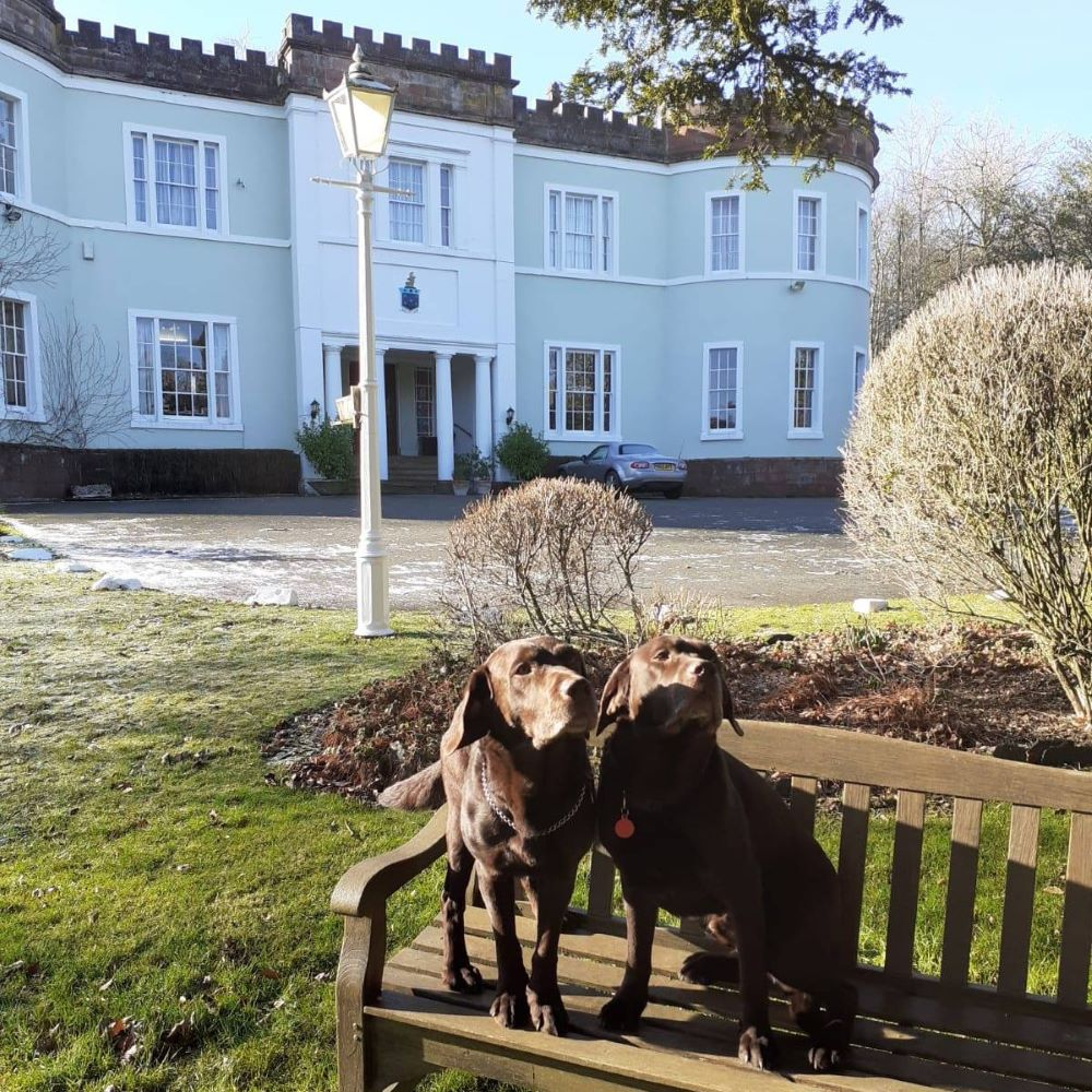 dog friendly hotels in the Lakes