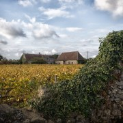 In Vouvray