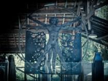 In Leonardo's garden