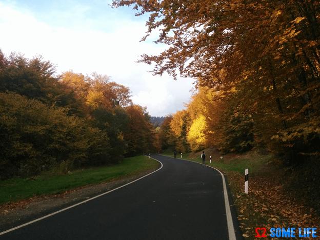 Picturesque Echternach to Berdorf Trekking Tour