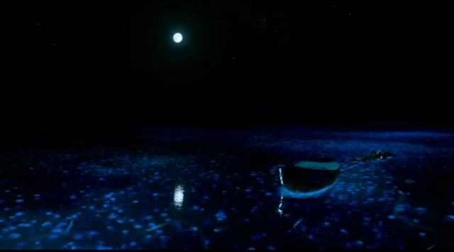 life_of_pi_night-d5su63q