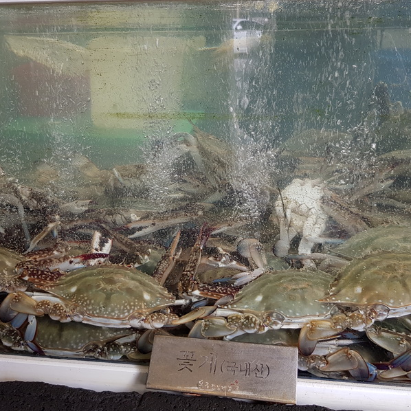 Seoul Itinerary Travel Tips Pro Soy Crab Sinsa