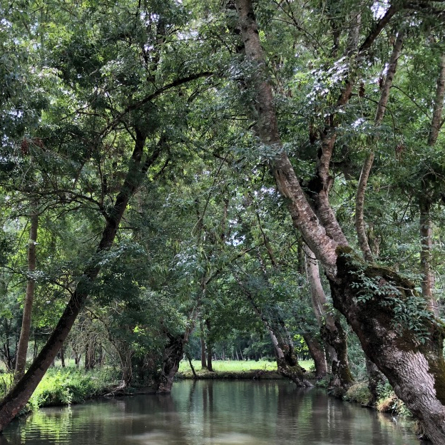 Northern Western France Driving Road Trip Itinerary Travel Tips Marais Poitevin Marsh
