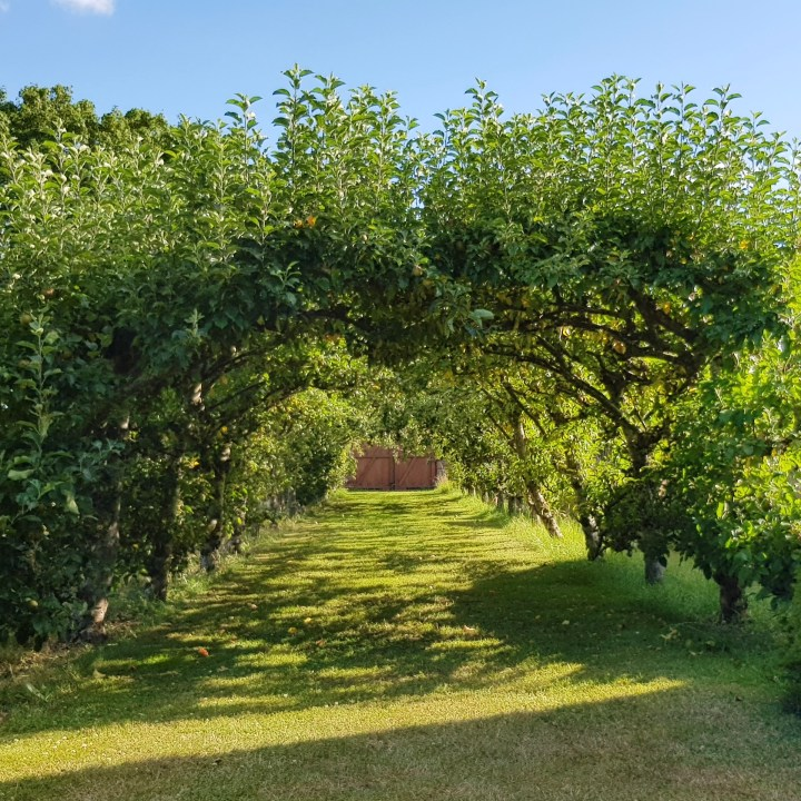 Great Fosters Luxury Country Home Weekend Retreat Central London Hotel Review Apple Arch