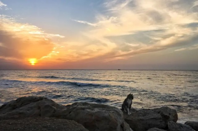 Travel Tel Aviv in April