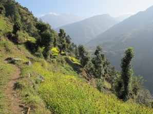 The trail down into Kinja
