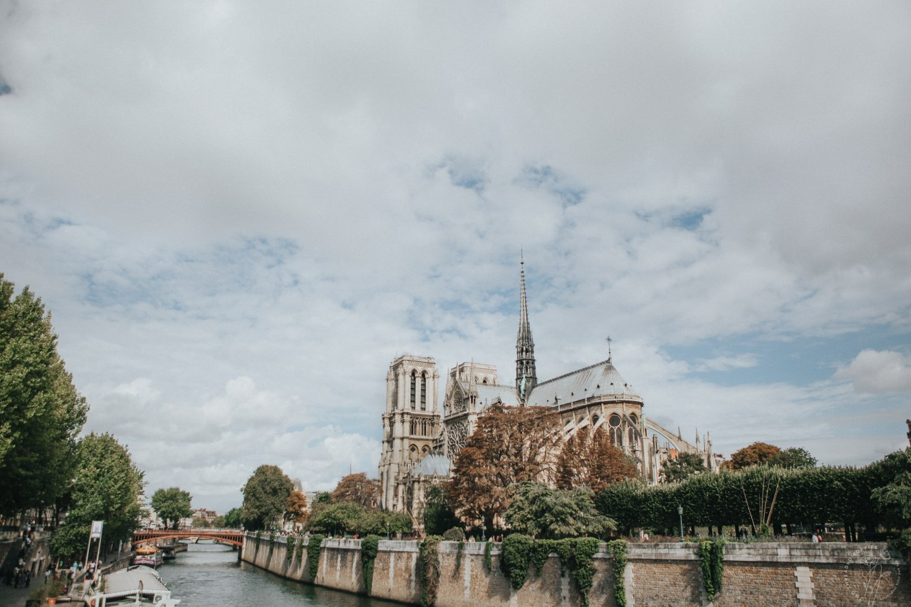 Paris Notre Dame Free Wallpaper Download Two Threaded Poppies