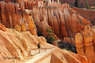We hiked down into Bryce Canyon at Sunset Point.