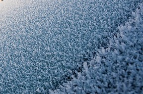 frosty-car
