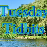 Tuesday Tidbits #90 Summer Time
