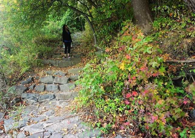"Artee hiking in Palisades Park, New Jersey - ""Palisades Interstate Park: Perfect For a Fall Hike"" - Two Traveling Texans"