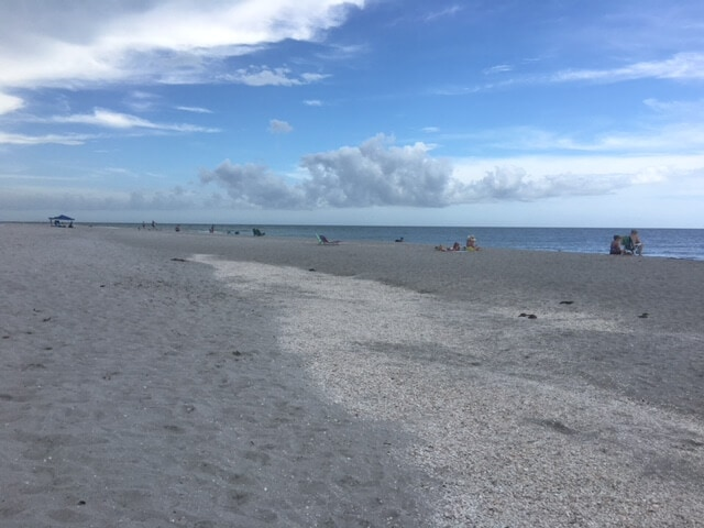 """Sanibel Island is more than just pretty beaches. - """"The Search for Sanibel Island Shells"""" - Two Traveling Texans"""