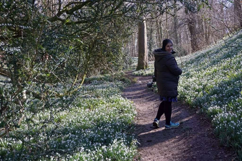 """Anisa walking on the path through the snowdrops. - """"Walsingham Pilgrimage and Snowdrops"""" - Two Traveling Texans"""