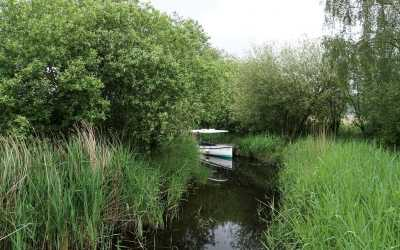 Exploring How Hill Nature Reserve in Norfolk, England