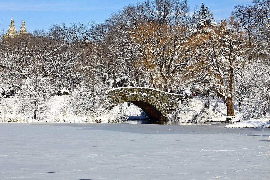 """Central Park Bridge covered in snow- """"Tips for Visiting New York City For the First Time"""" - Two Traveling Texans"""
