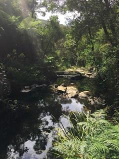 At the Sheoak Falls