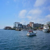 How to Spend a One-Day Layover in Halifax