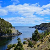 East Coast Trail: La Manche Village Path