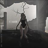happyface --- Solstice Antlers - Carib