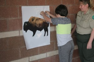 Who would Pin the Tail on the Bison at Caprock Canyons SP, TX?