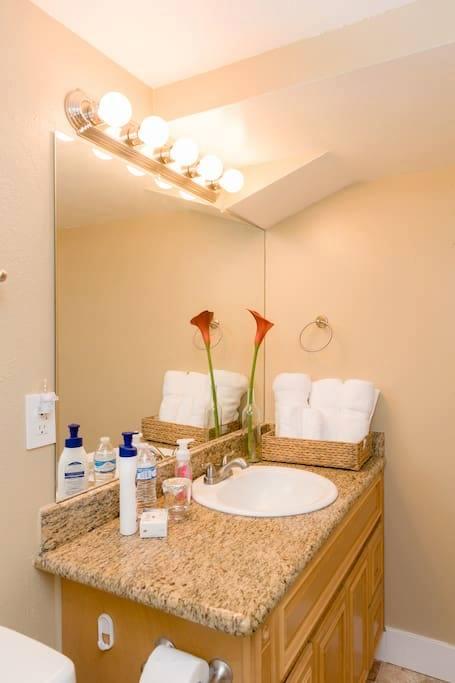 Olympus 132 Airbnb - downstairs bathroom.