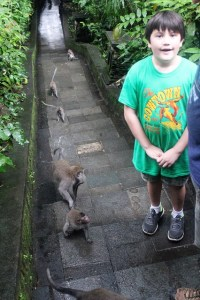 Visiting Bali with a 10-year-old boy: Ubud Monkey Forest: traffic