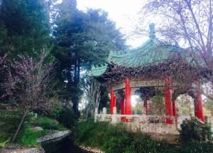 5 Family-Friendly Spring Hikes - Golden Gate Park