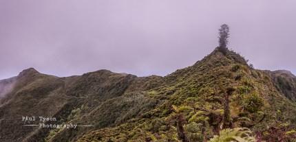 Towards Mt Acteaon