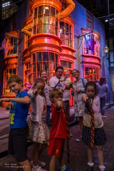 The family in Diagon Alley