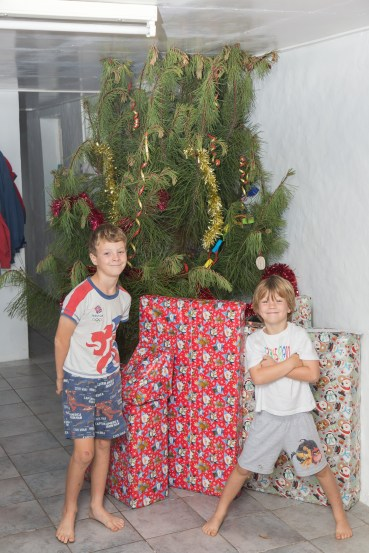 "The Christmas tree in background we ""gratefully"" won in a raffle, it doesn't even fit in the house and is bent over double. It was ""decorated"" by Pilling Primary school children!"