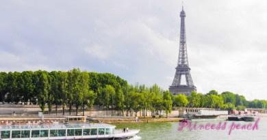 塞納河畔 Seine