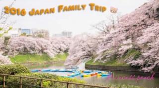 日本東京櫻花親子遊