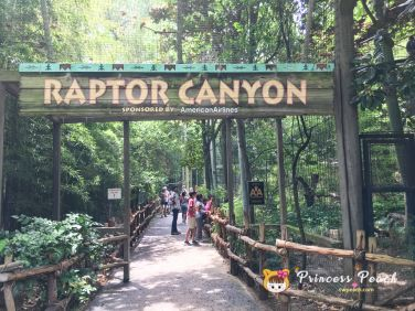 Fort Worth Zoo Raptor Canyon