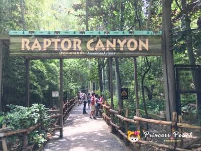 Fort Worth Zoo Raptor Canyon