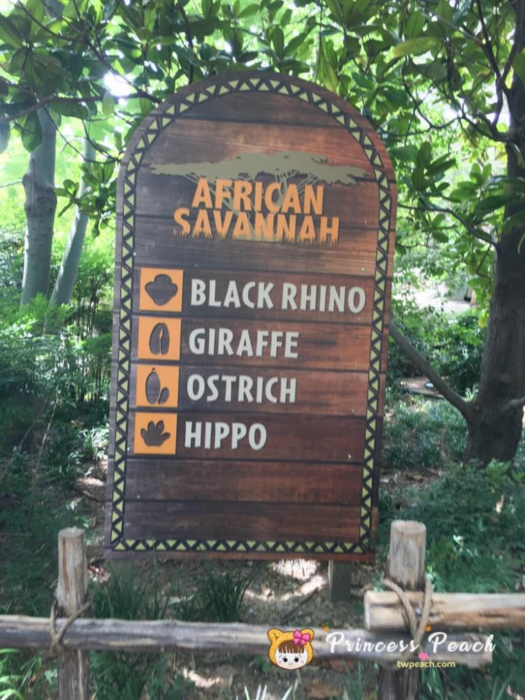 Fort Worth Zoo African Savannah