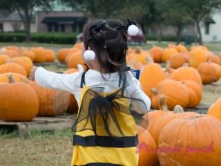 costume bumble bee