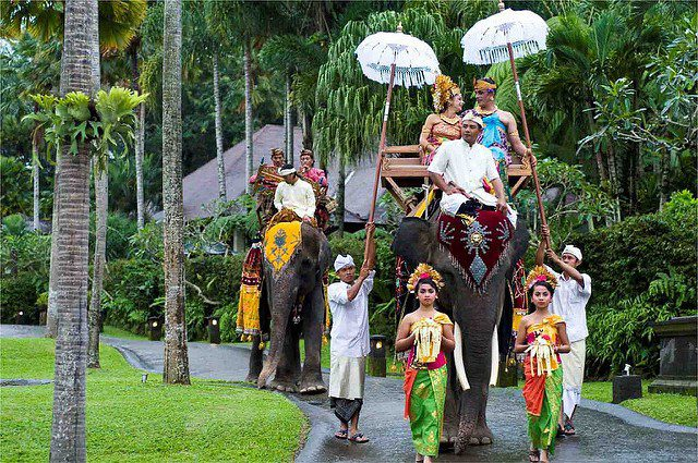 Wedding Venues Bali - Elephant Safari Lodge - Kura-Kura Guide