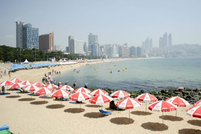 KoreaHoneymoon-Haeundae-Wikimedia