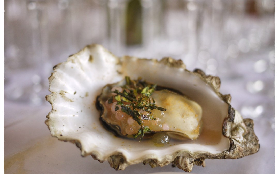 OOOysterfest 2013 – Celebrating Oysters and Wine in the Okanagan