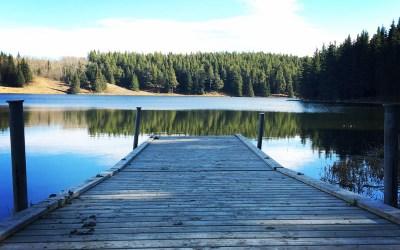 Wine, food and fresh air: Cypress Hills, Alberta