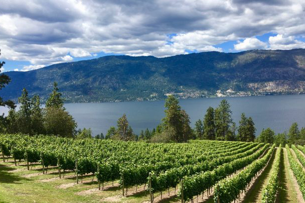 Favourite Okanagan Destinations: Lake Country