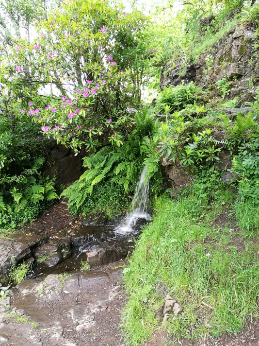 Totally wild waterfall.