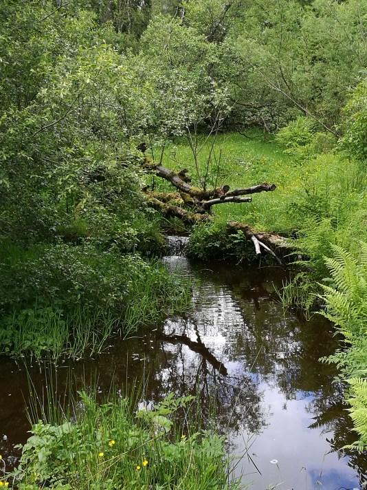 River bend.