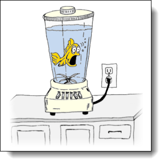 "Like a fish in a blender. Can we say ""stress?"" Image of a freaked out fish swimming in a blender that is about to be turned on."