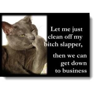 "LOLcat-itutde! A cat with attitude! Awesome lol cat available on a variety of gifts: ""Let just clean off my bitch slapper then we can get down to business!"""