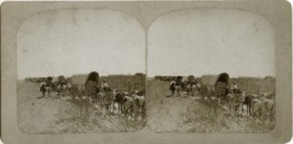 cotton_wagons0029