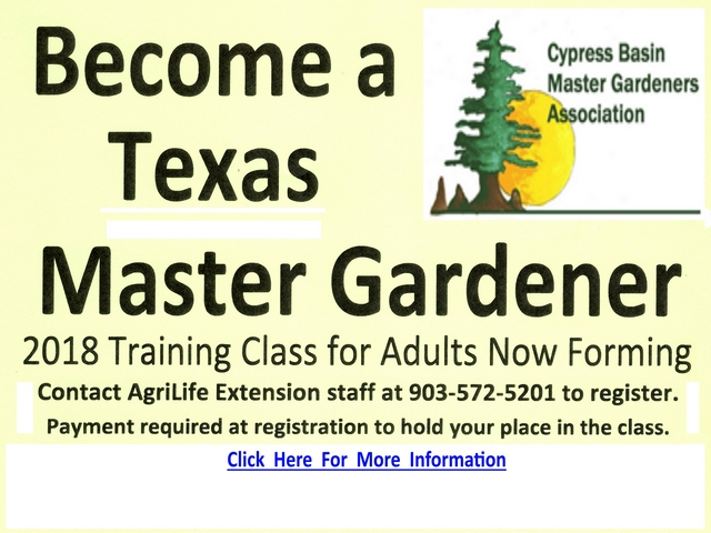 Cypress Basin Master Gardeners CBMGA is an educational and