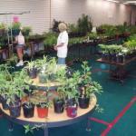 2008 Pass Along Plant Sale